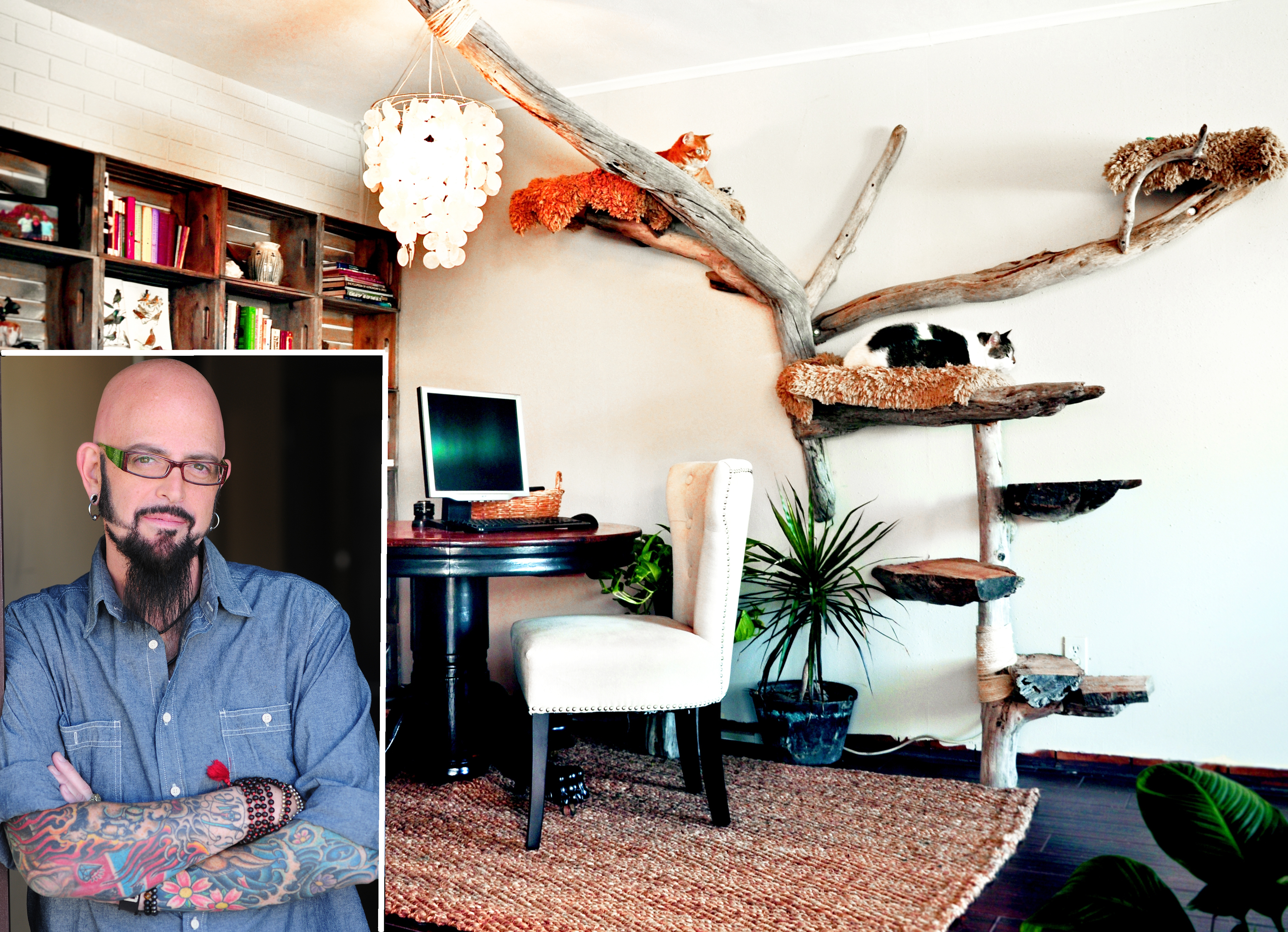 Quot My Cat From Hell Quot Host Jackson Galaxy On Taming Your Nyc