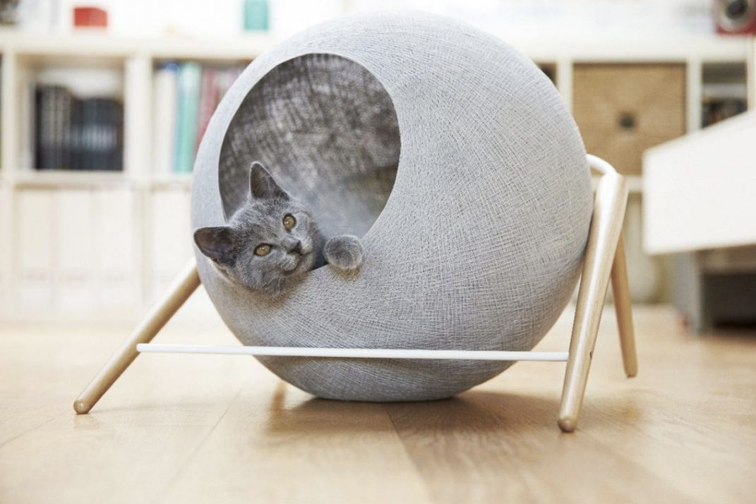Picture of: Stylish Pet Beds That Will Look Good In Your New York City Apartment