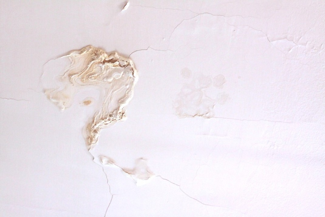 Apartment insurance coverage for mold? Here's what you need to know