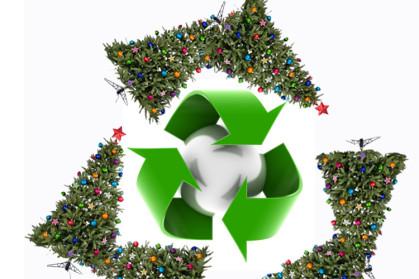 xmas recycle tree.jpg