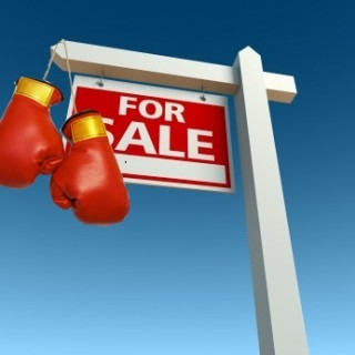 for sale boxing.jpg